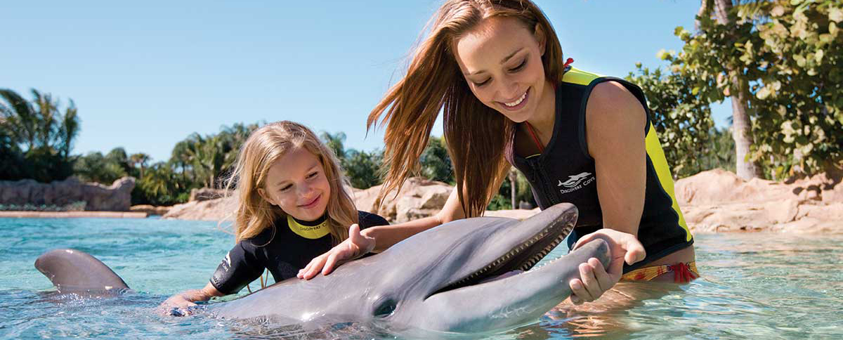 Available Packages Amp Pricing Options Discovery Cove Orlando